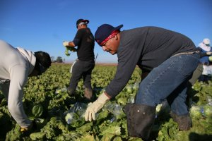 Farmworkers need families, not deportation and exploitation