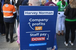 How Harvey Norman buys the press